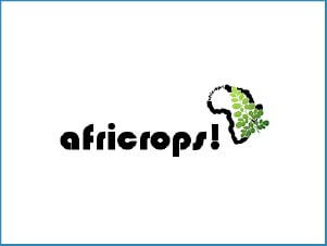 WooCommerce Webdesign Africrops New York